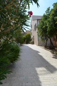St. Tropez 7